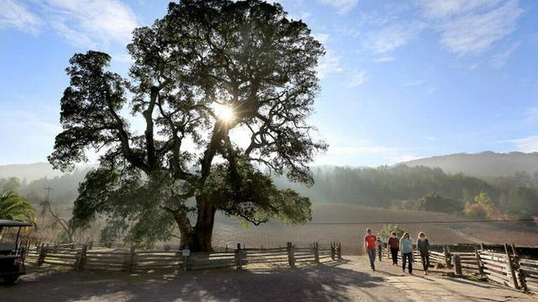 State parks in crisis; bureaucrats can't make the fixes